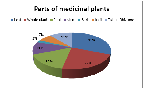 parts of medicinal plants used in treatment.