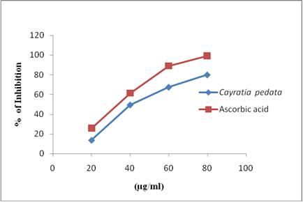 DPPH radical scavenging activity of Cayratia pedata.