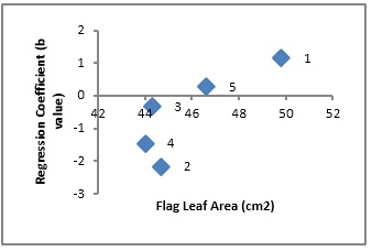 Scatter plot showing relationship of cultivars adaptation (Regression Coefficient) and flag leaf area in oat
