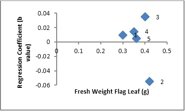 Scatter plot showing relationship of cultivars adaptation (Regression Coefficient) and fresh weight flag leaf in rice