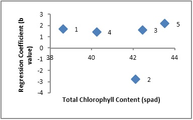 Scatter plot showing relationship of cultivars adaptation (Regression Coefficient) and total chlorophyll content