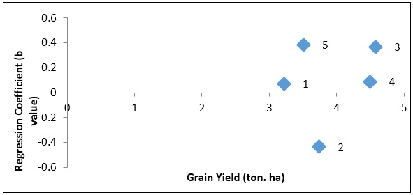 Scatter plot showing relationship of cultivars adaptation (Regression Coefficient) and grain yield in rice