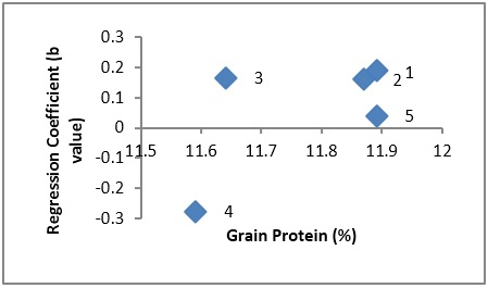 Scatter plot showing relationship of cultivars adaptation(Regression Coefficient) and grain protein percentage in rice