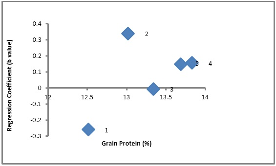 Scatter plot showing relationship of cultivars adaptation (Regression Coefficient) and grain protein percentage in oat