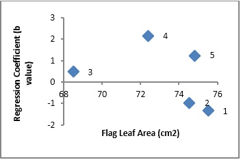 Scatter plot showing relationship of cultivars adaptation (Regression Coefficient) and flag leaf area in wheat
