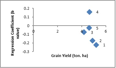 Scatter plot showing relationship of cultivars adaptation (Regression Coefficient) and grain yield in wheat