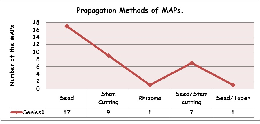Propagation Methods of Maps