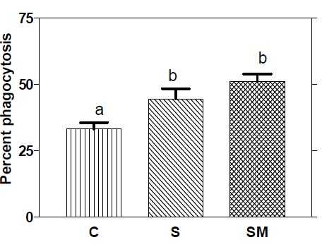 Effect of feeding A. racemosus and milk supplemented with A. racemosus on phagocytic activity of macrophages. Mean in each bar with different superscripts (a, b) were significantly different (P<0.05) from each other. (C: control, S: A. racemosus (Shatavari), SM: A. racemosus (Shatavari) supplemented milk)