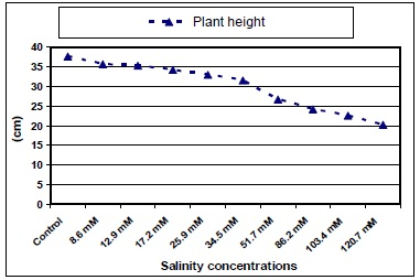 Plant Height of jojoba as Affected by Different Salinity Treatments