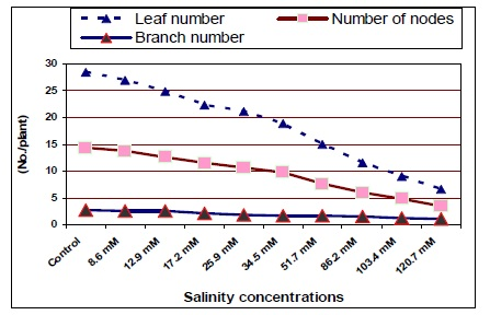 Branch number, leaf number and number of nodes/plant of jojoba as affected by different salinity treatments