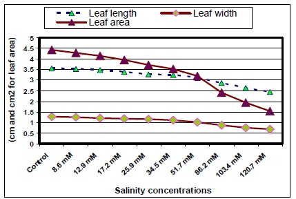 Leaf length, width and its area of jojoba as affected by different salinity treatments