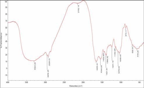 FTIR Analysis of Spirulina fusiformis