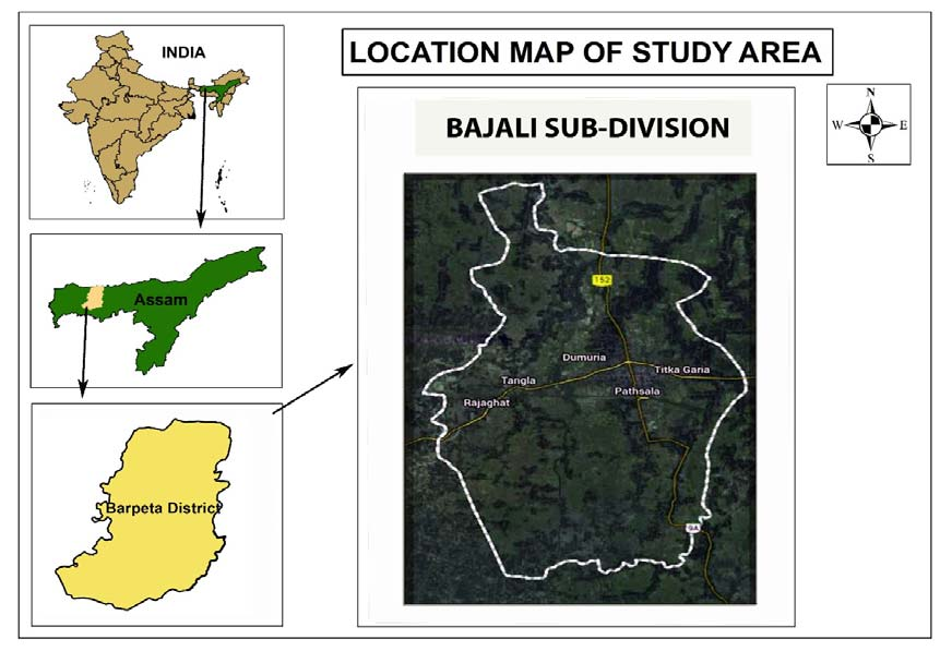Study area and sampling sites