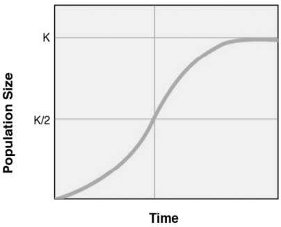 Logistic growths explicit the exponential grow in population until it approaches its carrying capacity (K).