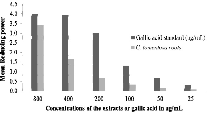 The concentration dependent reducing power of C. tomentosa roots compared with gallic acid standard.