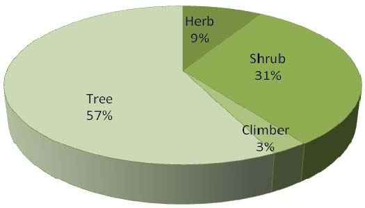 Life form-wise distribution of recorded plants