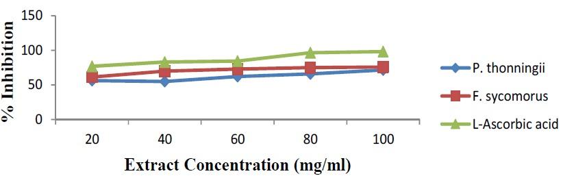 Hydrogen peroxide scavenging activity of methanol leaf extract of F. sycomorus, P. thonningii plant and L-Ascorbic acid