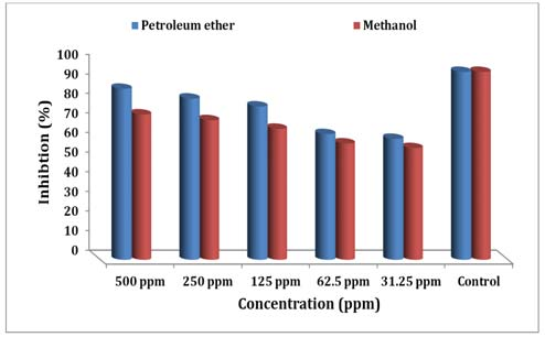 Inhibition percentage of MTT reduction cytotoxic assay for evaluation of Bauhinia rufescens extracts against MCF-7 cell lines.