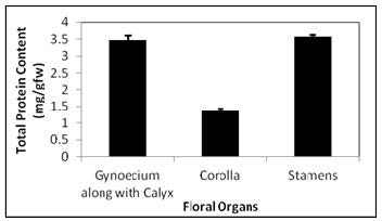 Protein content of floral organs of J. grandiflorum