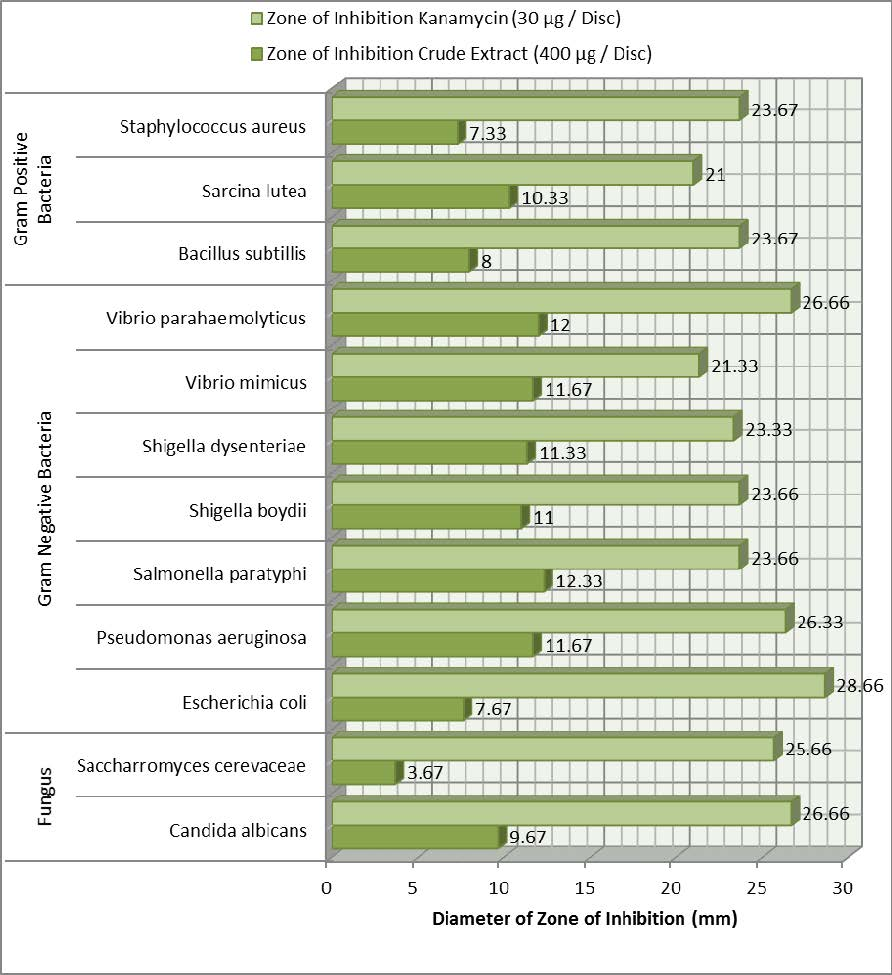 Graphical Presentation of Antimicrobial Activity of Litsea glutinosa