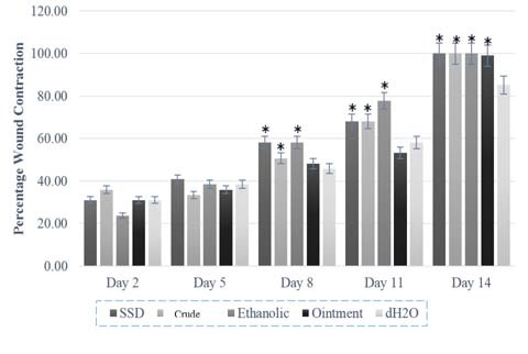 Effect of topical application of Bixa orellana extracts and control treatments on burn wound expressed as percentage of wound contraction. N=5. Values are mean ± SEM. * p<0.05 vs dH2O
