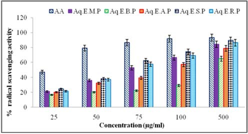 Scavenging activity of DPPH on various concentrations of Aq.E.M.P (Aqueous extract of Malgua peel), Aq.E.S.P (Aqueous extract of Sindhura peel), Aq.E.B.P (Aqueous extract of Banisha peel), Aq.E.A.P (Aqueous extract of Alphonso peel), Aq.E.R.P (Aqueous extract of Rumani peel) and Ascorbic acid (AA).
