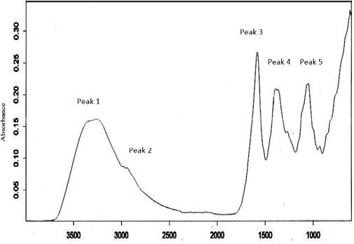 ATR-FTIR spectrum of V. amygdalina
