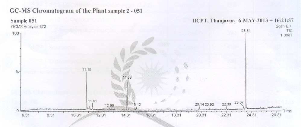 Chromatogram obtained from the GC/MS with the extract of Heliotropium indicum leaves